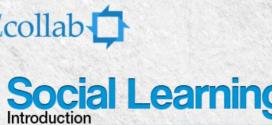 Un regard sur le Social Learning